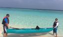 каяк с прозрачным днищем